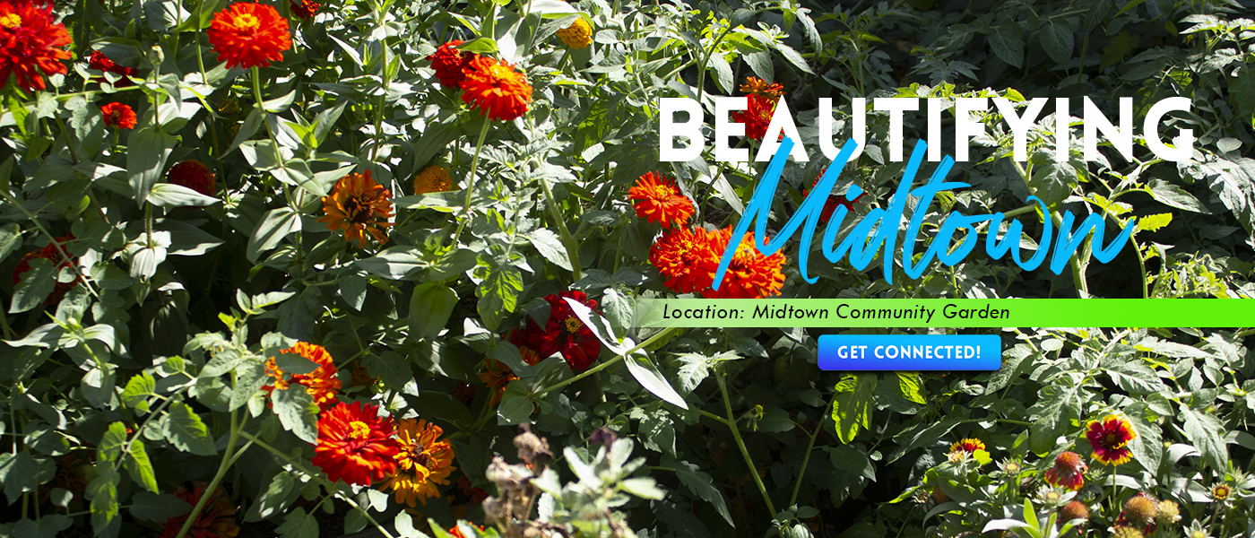 Website-BeautifyingMidtown4