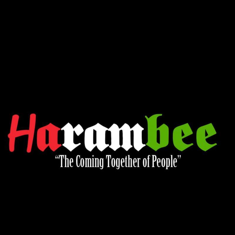 Harambee Kingston